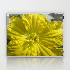 beauty in the mundane - ants and the luffa flowers Laptop & iPad Skin