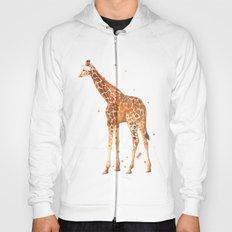 giraffe, african animals, wildlife, cute baby giraffe, nursery animals, safari Hoody