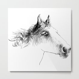Horse, animal head portrait, hand drawn black and white drawing Metal Print
