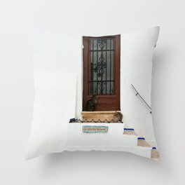 Two cats on White Stairs Throw Pillow
