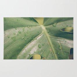 Philomena Philodendron Rug