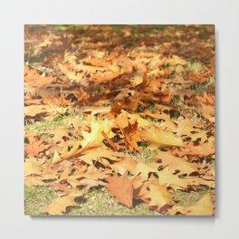 Leaves in the floor Metal Print