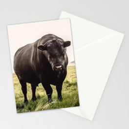 Big Black Angus Bull Stationery Cards
