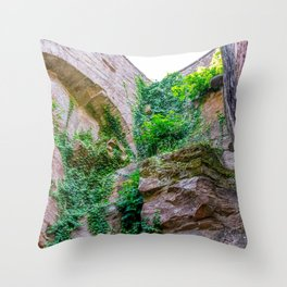 Plants growing on castle ruin Throw Pillow