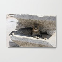 Guardian Of The Ruins Metal Print