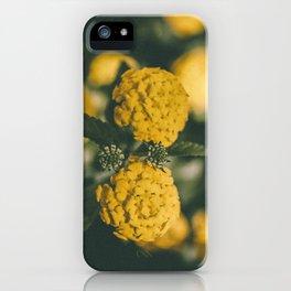 The Yellow Lantana iPhone Case