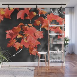 Cold Fall Wall Mural