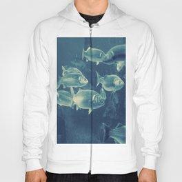 Fish 2 Hoody