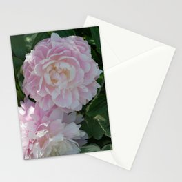 pink puffs Stationery Cards