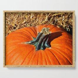 Pumpkin Stem Serving Tray