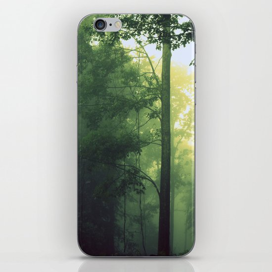 Is This The Place From My Dreams? iPhone & iPod Skin