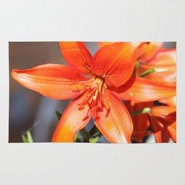 Orange Day Lily Rug