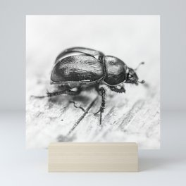 Black Beetle Mini Art Print