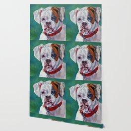 Boxer Dog Portrait Wallpaper