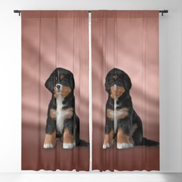 Drawing puppy Bernese Mountain Dog Blackout Curtain