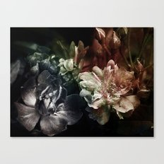 Is it a kind of dreaming...? Canvas Print