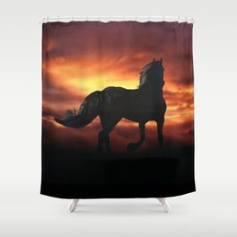 Horse kissed by the wind at sunset Shower Curtain