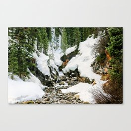 Winters Thaw Canvas Print