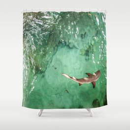 Look at the Shark Shower Curtain