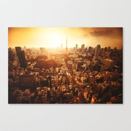 tokyo aerial view Canvas Print