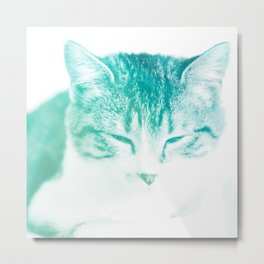 sleeping cat turquoise aesthetic art altered photography Metal Print
