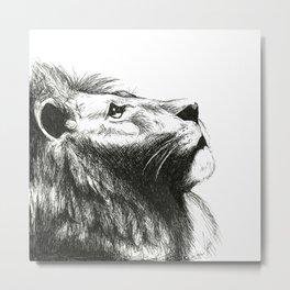African cat Metal Print