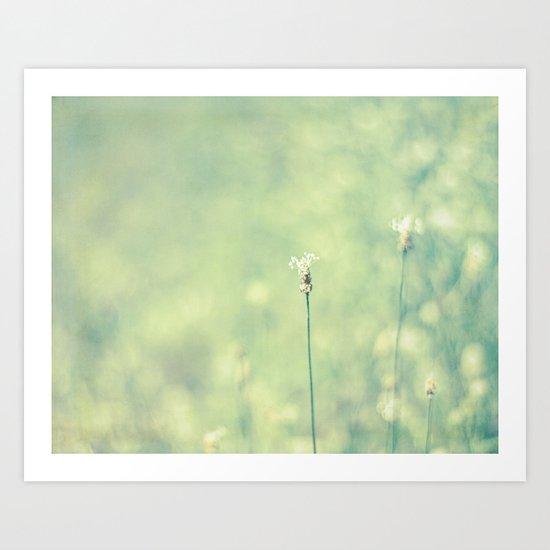 little weed Art Print