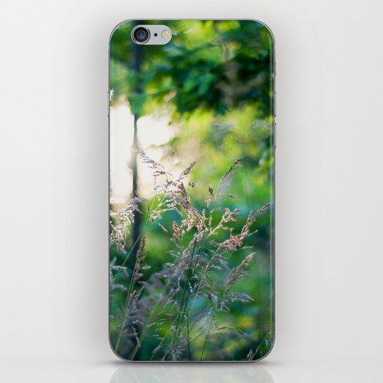 Summer Light iPhone & iPod Skin