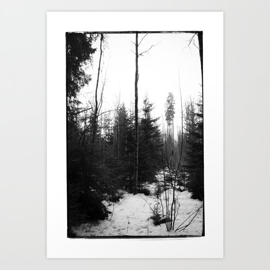 NORWEGIAN FOREST X Art Print