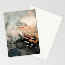 Butterfly (macro) Stationery Cards
