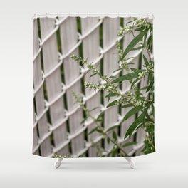 2018-07-15 Shower Curtain