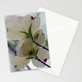 Dogwood Blossoms Stationery Cards
