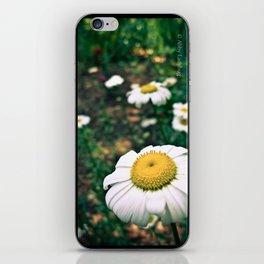 Whoopsie Daisies iPhone Skin