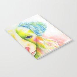 Patch Notebook