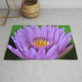 Water Lily #2 Rug