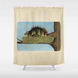 Hawkfish Shower Curtain
