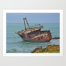 Cormorants Rest Art Print