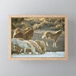Quenching Their Thirst Framed Mini Art Print