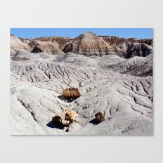 The Painted Desert & Petrified Forest Canvas Print