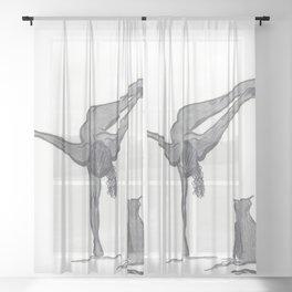 Sara Sheer Curtain