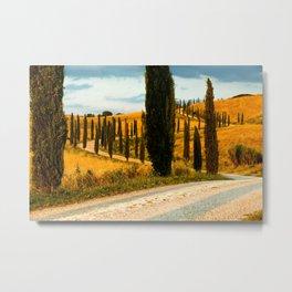 avenue of cypresses 3 Metal Print