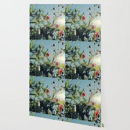 poppy flower no14 Wallpaper