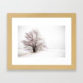 Iced Over Framed Art Print