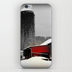 Silo and Snow iPhone & iPod Skin