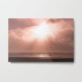California Rose Sunset - Nature Photography Metal Print