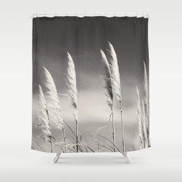 Toi Toi Shower Curtain