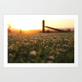 Sunset in Southland Art Print