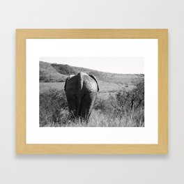 Elephant in Africa Framed Art Print