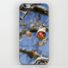 Snow Apple iPhone Skin