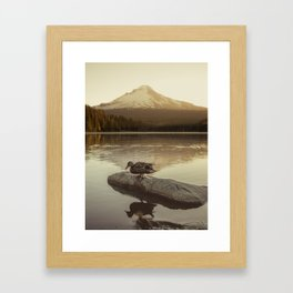 The Oregon Duck Framed Art Print